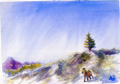 pine-ridge-lookout
