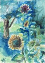 Alex Ferree_Sunflowers Capture the Light